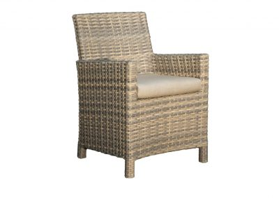 Mambo Dining Arm Chair by BeachCraft