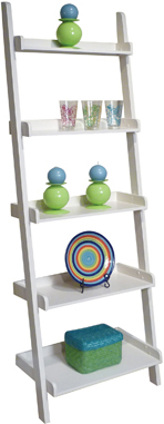 Accessory Ladder Bookcase by John Thomas